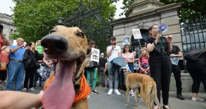 A protest in Dublin on Saturday against cruelty to animals in the greyhound racing industry. Photograph: Alan Betson