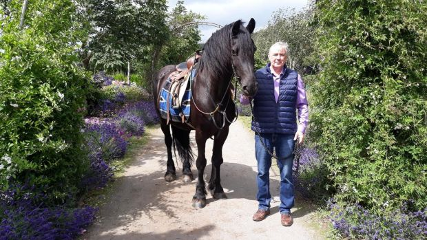 David Doyle, manager of the equine-assisted therapy centre at Liskennett Farm in Co Limerick.