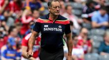 John Meyler will not seek a third year in charge of the Cork hurlers. Photograph: Laszlo Geczo/Inpho