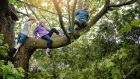Child's play: how risky activity is vital to learning how to be safe