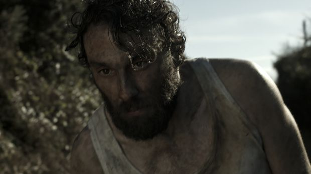 Shortscreen: Animal