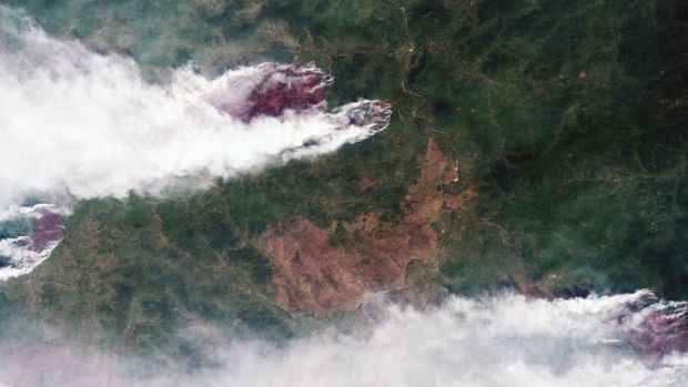 A satellite image of wildfires burning in Yakutia, eastern Siberia. Photograph: EPA