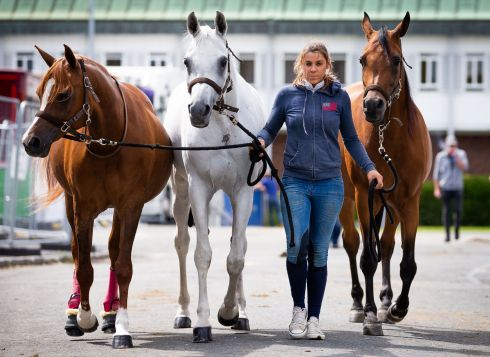 DUBLIN HORSE SHOW: Groom Coralie Oehlvogel from Spain with her horses, Nika, Ramira and Loretta at the RDS ahead of the Dublin Horse Show. Photograph: Tom Honan