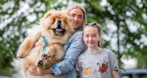 Pumba, a Chowchow from Kerry, is the nation's cutest puppy. Pumba's owners are Catriona and Taylor Dowling. Photograph: Alan Place