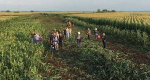 Rescuers, passengers and crew members  gather in a field following the  emergency landing near Zhukovsky International Airport in Moscow. Photograph: Reuters