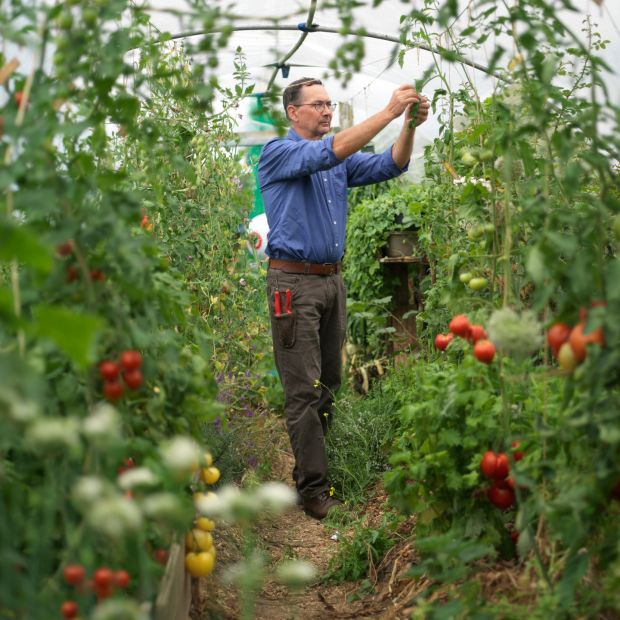 Tanguy de Toulgoët in his Durrow garden's produce-filled polytunnel. Photograph: Richard Johnston