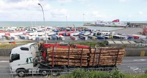 Freight trucks at Rosslare Europort in Co Wexford: Industry groups  warn delays at English ports could hit the transport of fresh food and time-sensitive produce. Photograph:  Niall Carson/PA