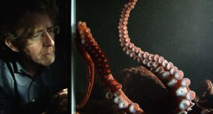 David and Heidi: Octopuses can use tools, recognise faces, hold grudges, and use an iPhone