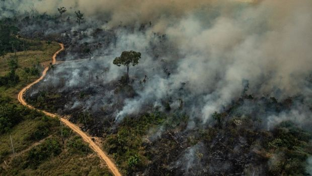 Handout aerial picture released by Greenpeace showing smoke billowing from fires in the Amazon biome in the municipality of Altamira, Brazil. Photograph: Victor Moriyama/Greenpeace/AFP/Getty Images