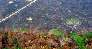 An aerial view of scorched areas of the Amazon rainforest, near Porto Velho, Rondonia state, Brazil.  President Jair Bolsonaro has authorised deploying the armed forces to help combat raging fires. Photograph: Getty