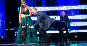 Dublin Rose Laura Vines' dog Penny, high fives Dáithí Ó Sé onstage at the Rose of Tralee Festival Dome on Monday night. Photograph: Domnick Walsh