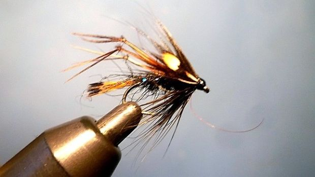 Black Jungle Cock Hopper fly, tied by irishflycraft@gmail.com.