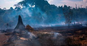 View of a burnt area of forest in Altamira, Para state, Brazil, on August 27th. Photograph:  Joao Laet/AFP/Getty Images
