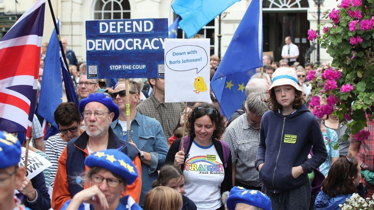 Defend Democracy T-Shirt Resist The Parliament Shutdown Adult /& Kids Tee Top