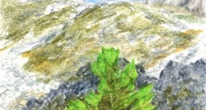 Rare moss at the Allihies mine in west Cork. Illustration: Michael Viney