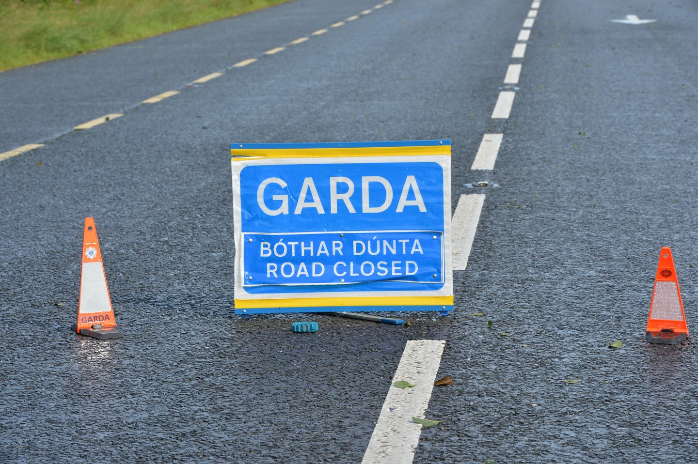 Man dies after car hits tree near Gorey in Co Wexford