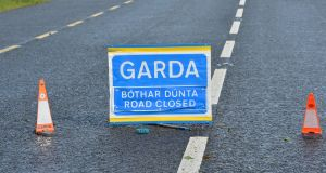 A man has died after the car he was driving left the road and struck a tree in north Co Wexford.