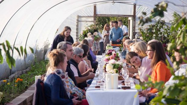 A polytunnel meal at Bumblebee Farm. Photograph: John Daly/Inspire Group