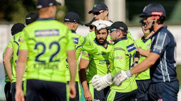 Ireland celebrate a Stuart Thompson wicket against Scotland. Photograph: Laszlo Geczo/Inpho