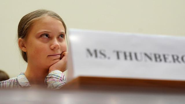 Greta Thunberg flips US congressman's climate change claim back at him - Irish Times