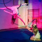 Dublin Circus Project