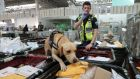 Revenue sniffer dog Bailey with his handler Alan Foley at the Dublin Mail Centre in Dublin 12. Photograph Nick Bradshaw