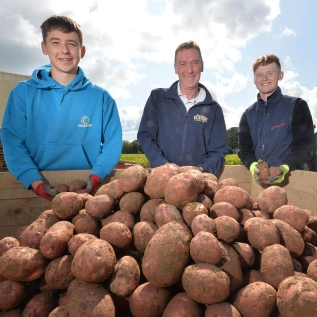 Martin Clinton wanted to keep the centuries-old tradition of Clintons growing potatoes alive for generations to come. Photograph: Alan Betson