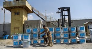 A sniffer dog checks election ballot boxes for explosives after they were unloaded from a truck at a warehouse in Kabul on Sunday.  Photograph: Getty Images