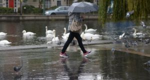 Swans gathered in the rain at Dublin's Portobello bridge. File photograph: Alan Betson/ The Irish Times