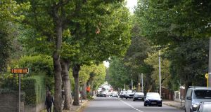 The leafy New Cabra Road, in Dublin. Photograph: Dara MacDónaill/The Irish Times