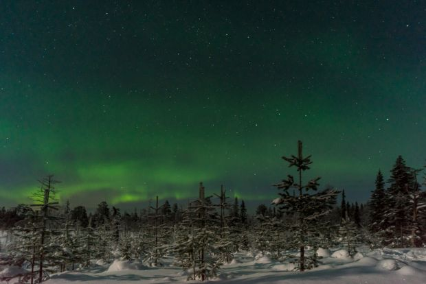 Northern lights in Lapland.