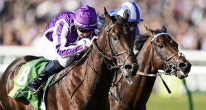 Ten Sovereigns, left, with Donnacha O'Brien up,  takes on Australia's finest sprinters as the reigning July Cup champion. Photograph:  Alan Crowhurst/Getty Images