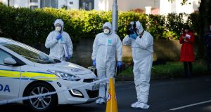 Gardaí believe a feud between two groups of men in south Co Dublin was at the centre of the stabbing murder of Derek Reddin in Loughlinstown. Photograph: Nick Bradshaw/The Irish Times.