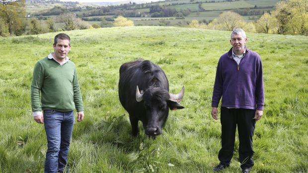 Toby Simmonds left, Johnny Lynch of Toonsbridge Dairies buffalo mozzarella business.