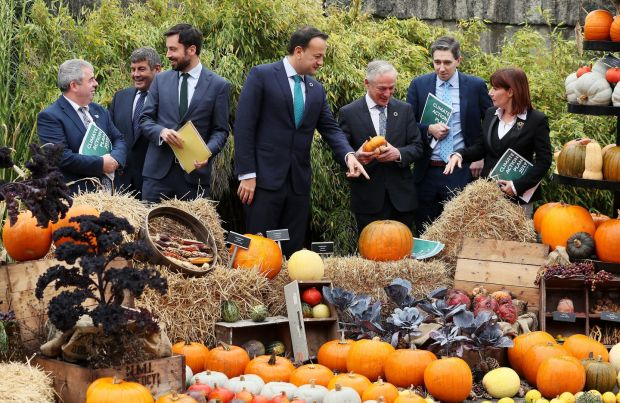 Taoiseach Leo Varadkar (centre) with (from left) Minister for Flood Relief Kevin Moran, Minister for Food, Forestry and Horticulture Andrew Doyle, Minister for Housing Eoghan Murphy, Minister for Climate Action & Environment Richard Bruton, Minister for Health Simon Harris and Minister for Culture Josepha Madigan, at the autumn display in the Botanic Gardens, Dublin, for the launch of the First Progress Report on the Climate Action Plan 2019. Photograph: Brian Lawless/PA Wire