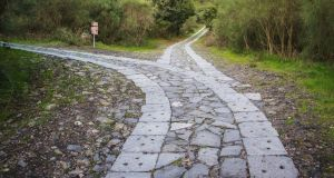 Illnesses are like journeys and decisions have to be made at forks in the road. Photograph: iStock