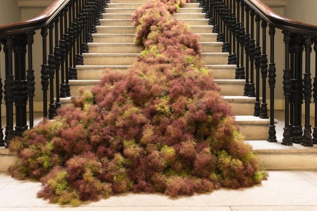 The staircase at King's Inn decorated with smoke bush