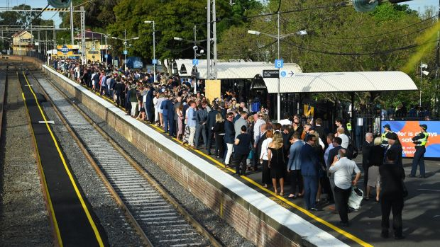 On Cup day, with all the special trains running direct from Flinders Street, I was there in record time. Photograph: James Ross/EPA