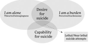 Thomas Joiner's Interpersonal Theory of Suicide.