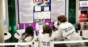 Participants at the 2019 BT Young Scientist & Technology Exhibition at the RDS review their work