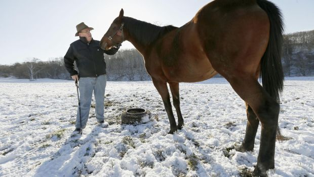 "Harry Sweeney at his stud farm in Hidaka, Hokkaido. ""It really is a sort of racing utopia. . .There are more bets placed in Japan each year that the United States, the UK and Ireland combined."" ,Photograph: Kyodo News Stills via Getty Images"