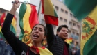 'We've toppled a dictator', Bolivian protesters celebrate Morales' resignation