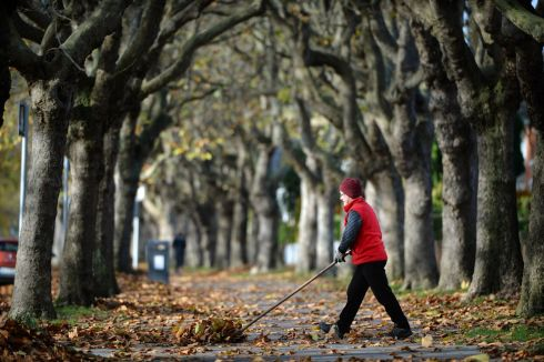 AUTUMNAL AFTERNOON: A resident on Griffith Avenue, Dublin, clearing some leaves from the path. Photograph: Dara Mac Dónaill
