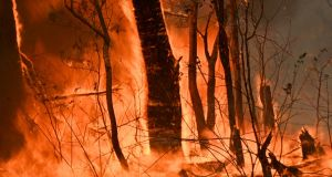 A bushfire burns outside a property near Taree, 350km north of Sydney on Tuesday. Photograph: Getty Images