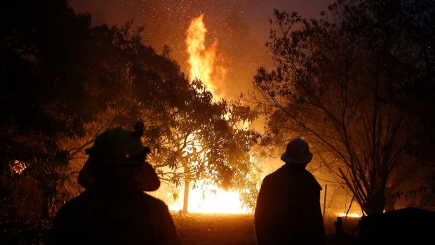 Firefighters at a fire near the Pacific Highway, north of Nabiac, New South Wales. Photograph: EPA/DARREN PATEMAN