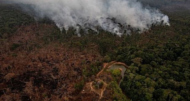 Amazon Deforestation Soars To 11 Year High Under Bolsonaro