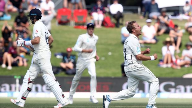 Neil Wagner celebrates the wicket of Joe Root. Photograph: Phil Walter/Getty