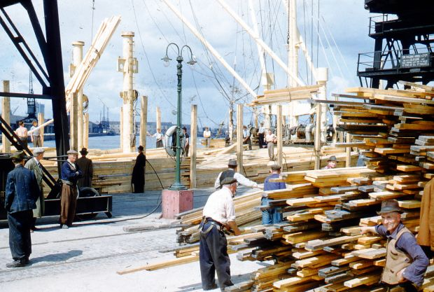 Recently delivered timber is stacked up along the docks. Photograph: Dublin Port Archive