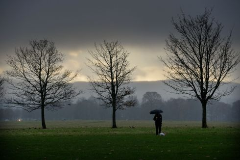 NOVEMBER RAIN: Damp and gloomy weather in Phoenix Park, Dublin. Photograph: Alan Betson