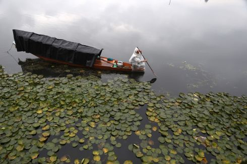KASHMIR CANOE: A man rows his boat during rainfall in Srinagar, India. EPA/FAROOQ KHAN